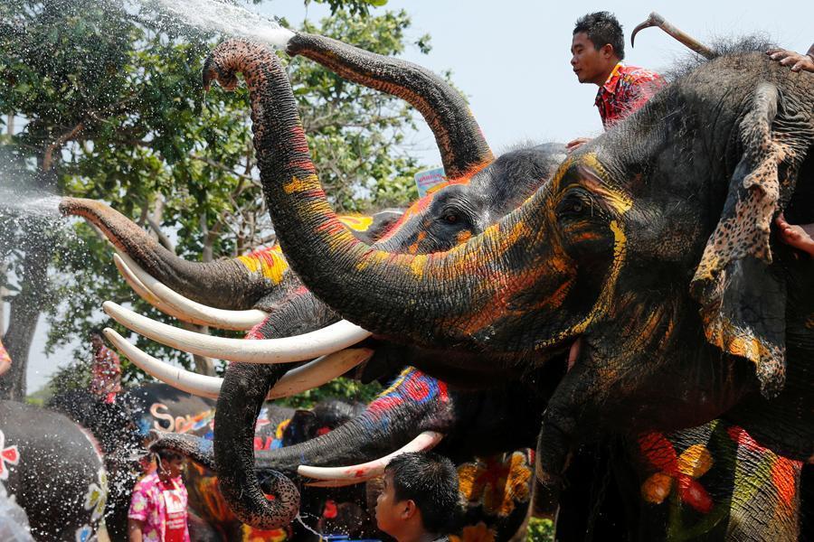 معرفی بهترین دیدنی های تایلند