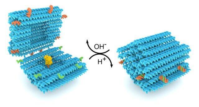 انتقال دارو به بدن با یاری یک نانوکپسول