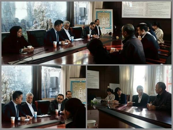 مدیر مجموعه نیاوران با معاون رئیس موزه شهر ممنوعه پکن ملاقات کرد