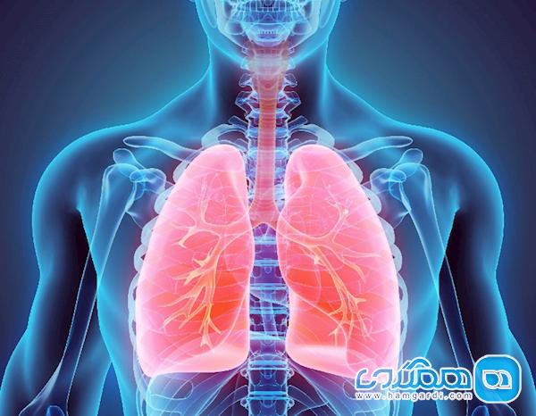 آواز خواندن باعث تقویت دستگاه تنفسی می گردد؟