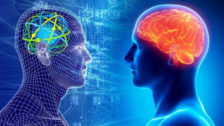 بازآفرینی بینایی انسان با هوش مصنوعی