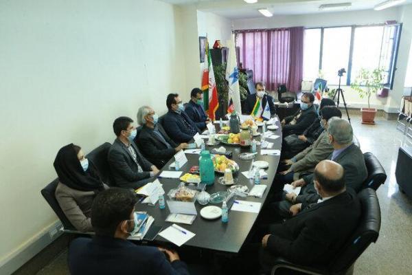 تاکید بر ضرورت آموزش های رسانه ای و تاسیس دانشکده رسانه در افغانستان