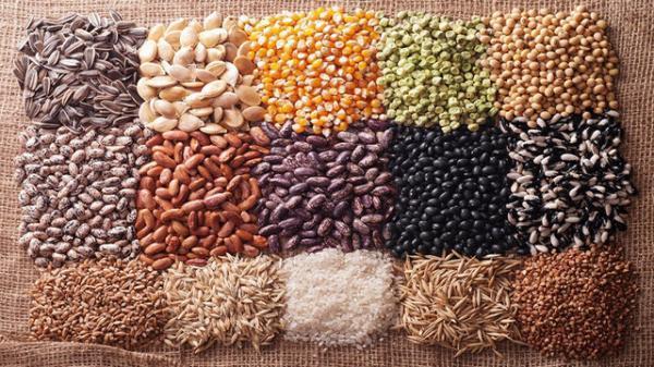 معرفی 70 رقم بذر اصلاح شده توسط مرکز تحقیقات کشاورزی لرستان
