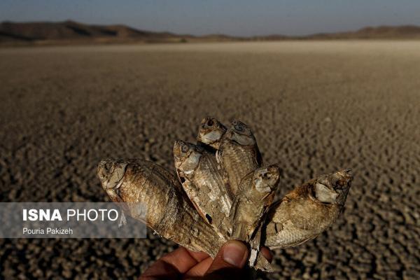 (تصاویر) خشکی تالاب آق گل
